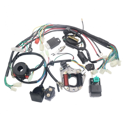 Complete Electrics Stator Coil CDI Wiring Harness for 4 Stroke ATV KLX 50cc 70cc 110cc 125cc Quad Bike Buggy Go Kart Pit Dirt Bikes